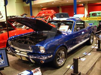 GT350 by texanidiot25