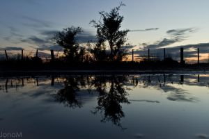 Reflections in a puddle by JonoMphotography