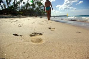 Footsteps In The Sand by dodlhuat