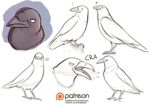raven reference sheet by Kibbitzer