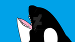 I speak Shamu by Dolphingurl21stuff