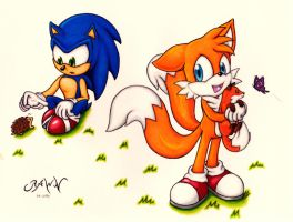 :Contest: Sonic and Tails by RAWN89