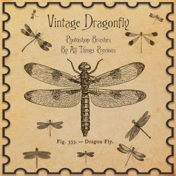 Vintage Dragonfly Brushes by AllThingsPrecious