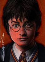 Harry Potter Sketch Card by RandySiplon