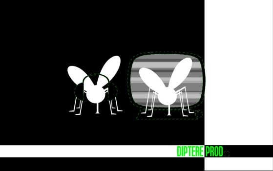Diptere productions by Diptere
