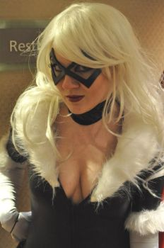 Black Cat by SubconsciousDreaming