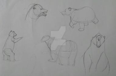 Boceto oso by LinsCassio