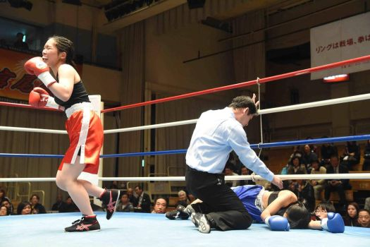 Knockout with a rookie fight by femboxjp
