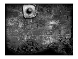 wall by tumbler591