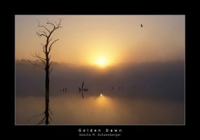 Golden Dawn by lostheart