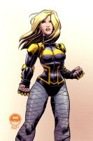 Black Canary - CAA by EryckWebbGraphics