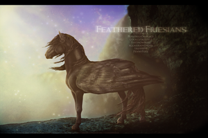 Feathered Friesians by PureBredDressage