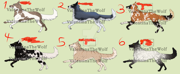 CANINE ADOPTABLE - [1/6 OPEN] by ValentinaTheWolf
