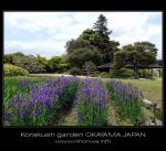The korakuen garden -4- by Lou-NihonWa