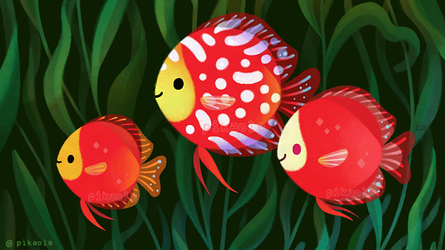 Red discus by pikaole