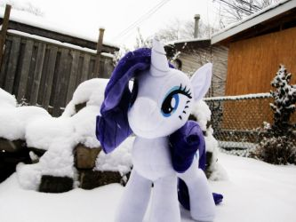 Snowy Mare by Envirotech