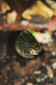 Down In A Hole by ByNax