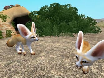 ZT2 Showcase - Fennec Fox by ProfDanB