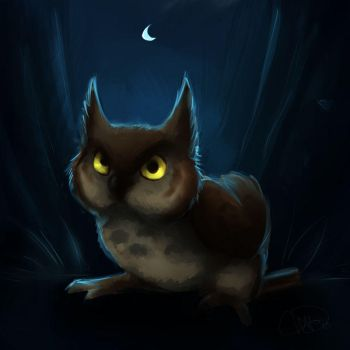 owl in the night by gabfury
