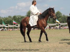 Hungarian Festival Stock 123 by CinderGhostStock