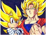 super sonic and ssj goku by trunks24