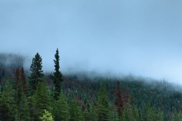 Gloomy day in  Canadian Rockies by vlad-m