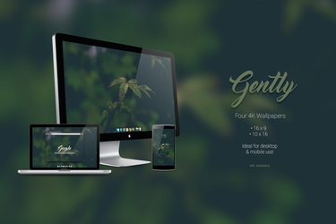 Gently - 4k HD Wallpaper for Mobile and Desktop by oli-minima