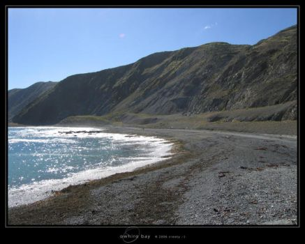 Owhiro Bay by Crooty