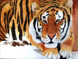 Resting Tiger by Meorow