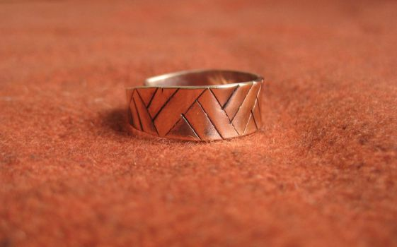 Bronze Ring by tanjaESK