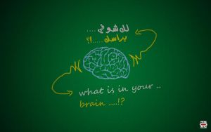 what is in your brain .. by mohanmadabd