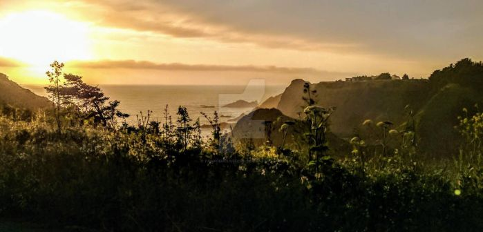 California Coastline At Sunset by PamplemousseCeil