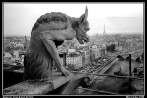 Parisian Gargoyle by misteriddles