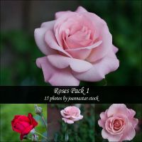 Roses Pack 1 by joannastar-stock