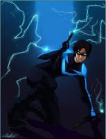 Nightwing by Leopartisma