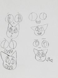 Face Expressions Test by WeebaKitten