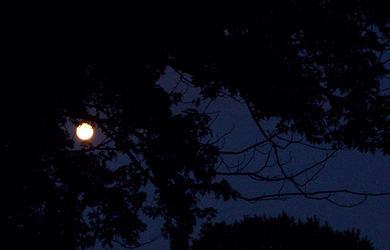 Solstice Moon June 19 by mymysticgems