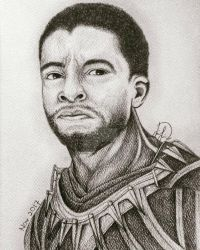 T'Challa the Black Panther by Laily95