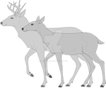 White Tailed Deer Lines [P2U] by QueenHalloween