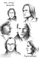 Sam Sammy Winchester by Carlines