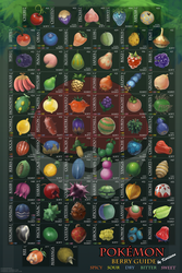 The Illustrated Pokemon Berry Guide by Karisean