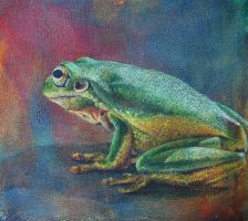 Frog study 1 by k8lag