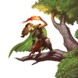COMMISSION - Wood Elf Mage by Steamhat