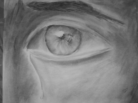 Charcoal- The Eye of the Storm by Dog-master
