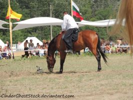 Hungarian Festival Stock 120 by CinderGhostStock