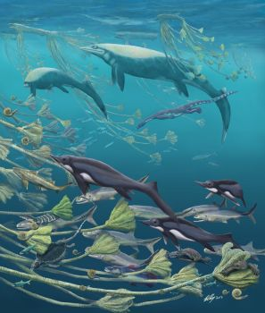 TSoSC #3: The floating lily fields of Guanling by Gogosardina