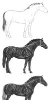Warmblood Stallion Greyscale by noctwo
