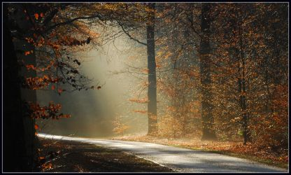 Further down the autumn bend by jchanders