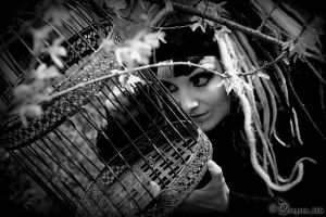 the cage by dragona666