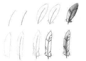 Feathers by TigroB
